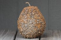 African Warty Gourds