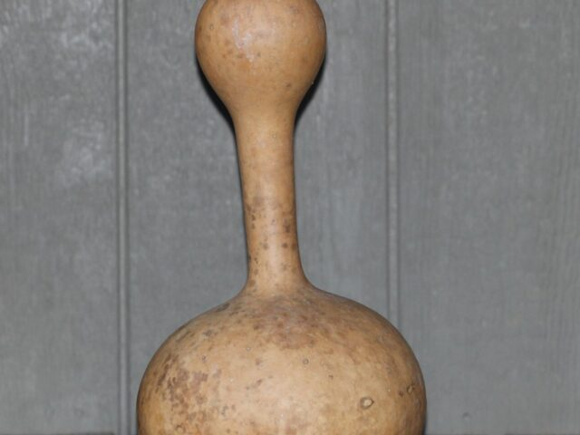 Indonesian Bottle Gourds