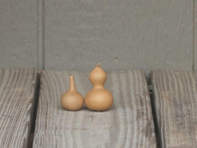 Jewelry Gourds