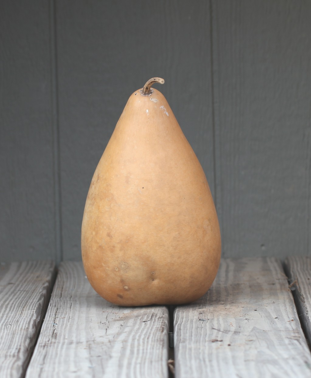 Tall Gourds